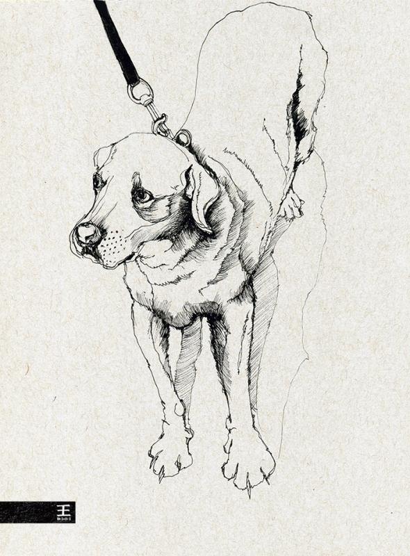 bomb_dog