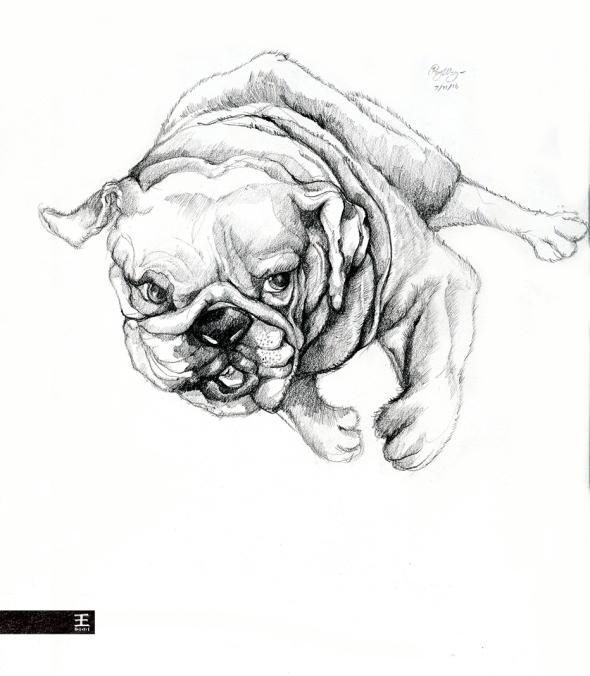 puppy_final